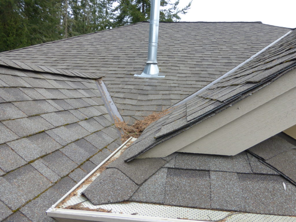 This quirky floor plan roofline will not shed water well -see how it traps debris on the roof.